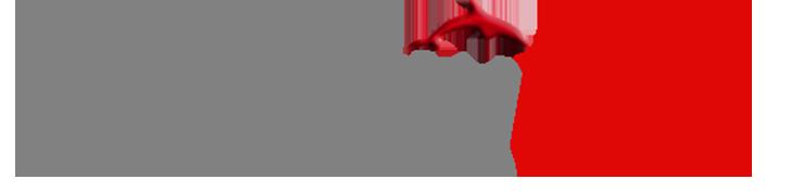 logotipo de Publicityred Agencia SEO